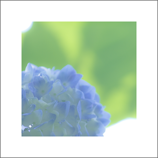 100611_1727.png